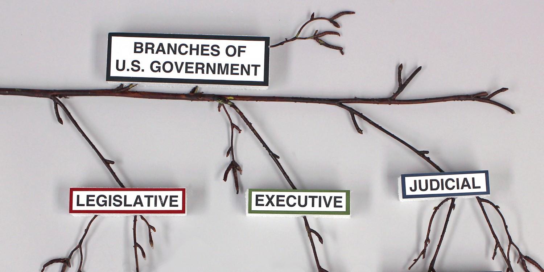 BranchesOfGovt.StepGT