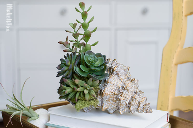 10 Minute Seashell Succulent Arrangement