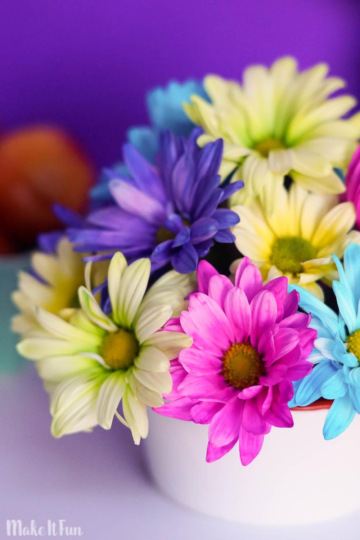 Floral Arrangement for 5 Dollars